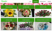 SITO WEB Kvetinarstvi Kamelie Alena Zbrankova