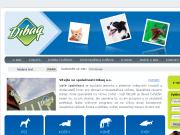 SITO WEB Dibaq a.s.