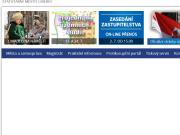 SITO WEB Magistrat mesta Liberec