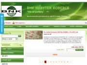 WEBOVÁ STRÁNKA BNK, akciová společnost