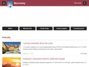 WEBOVÁ STRÁNKA Město Borovany