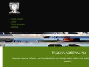 WEBOVÁ STRÁNKA Evropská databanka a.s. oddělení zahraničních služeb