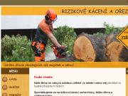 WEBOVÁ STRÁNKA Rizikové kácení Jiří Petřík