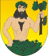 Město Město Albrechtice Městský úřad