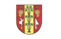 Město Velké Bílovice