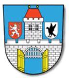 Mesto Zelezny Brod