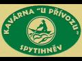 Vynikaj�c� grilovan� speciality nab�z� v obci Spytihn�v