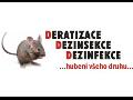 Deratizace, dezinfekce a dezinsekce pro dom�cnosti i podniky