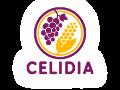 CELIDIA: Prodej bezlepkových potravin a potravin pro diabetiky
