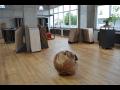 Podlahové studio Praha 4-Nusle se zázemím velkoobchodu