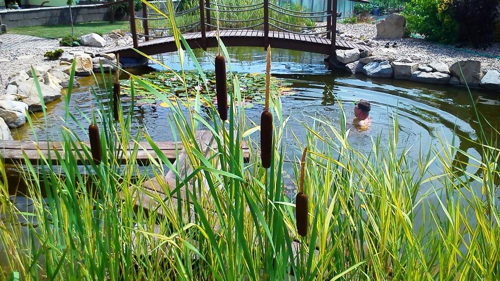 Vodní prvky na Vaší zahradu - Koupací jezírka