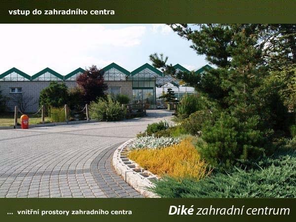 Specializované zahradnictví Diké