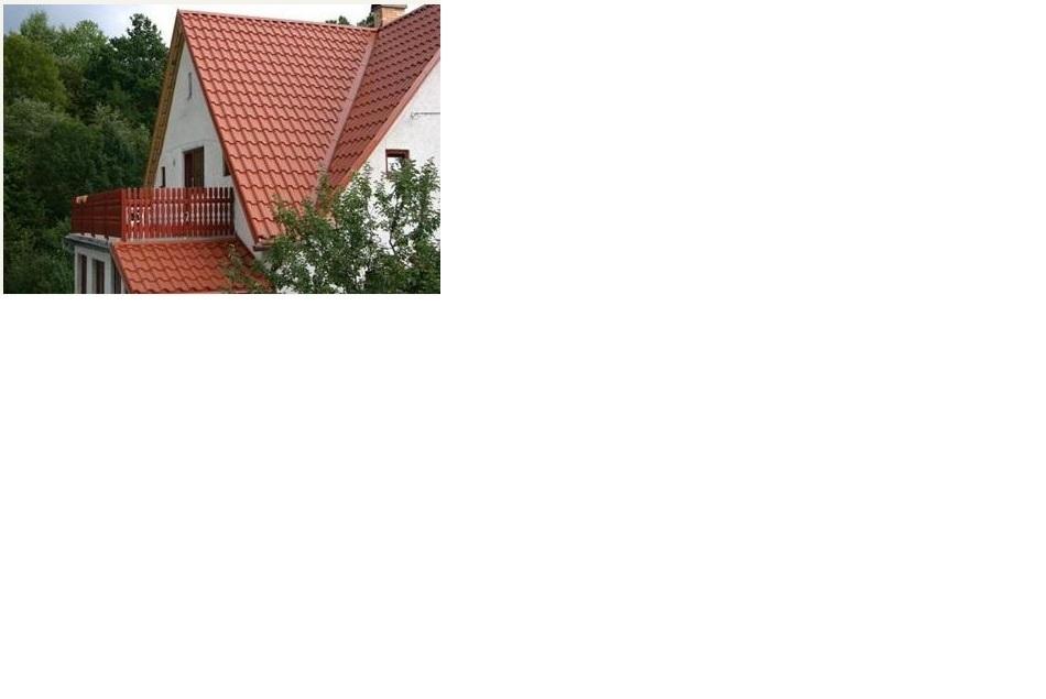 Odborníci na kvalitní střechu