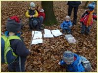 Lesní školka Zlín podporuje pravidelný pobyt dětí v přírodě