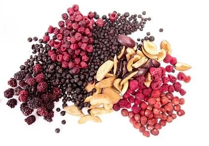 mrazem sušené ovoce - eshop