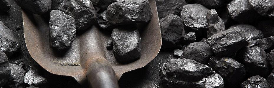 Prodej uhlí a palivového dříví všeho druhu rychle a s dovozem až domů