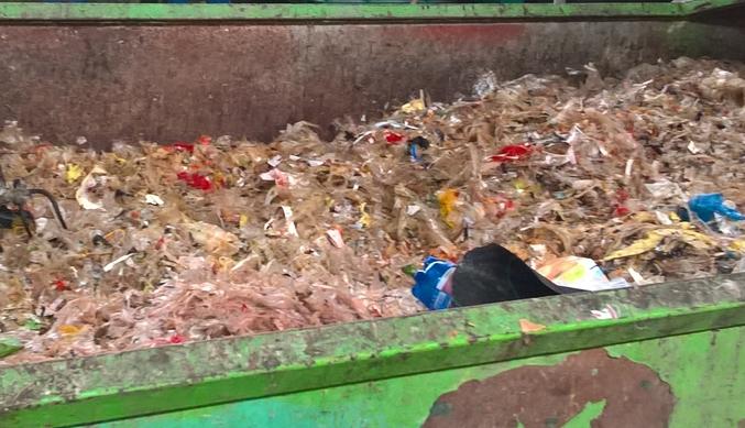 Svoz a odstraňování vedlejších živočišných produktů Praha - od odpadů z masné výroby po rizikový materiál
