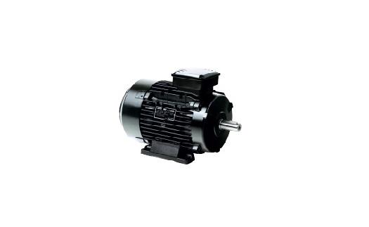 3-fázový asynchronní elektromotor