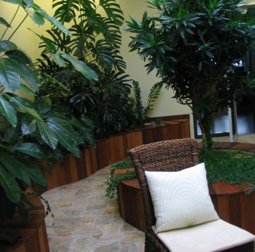 Návrh květinové výzdoby interiéru a instalace Praha– do každého prostoru