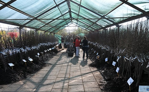 Volná pracovní místa v Zahradnickém centru Brabec - zahradník, florista nebo pokladní