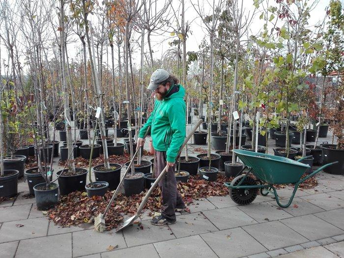 Práce v zahradnictví