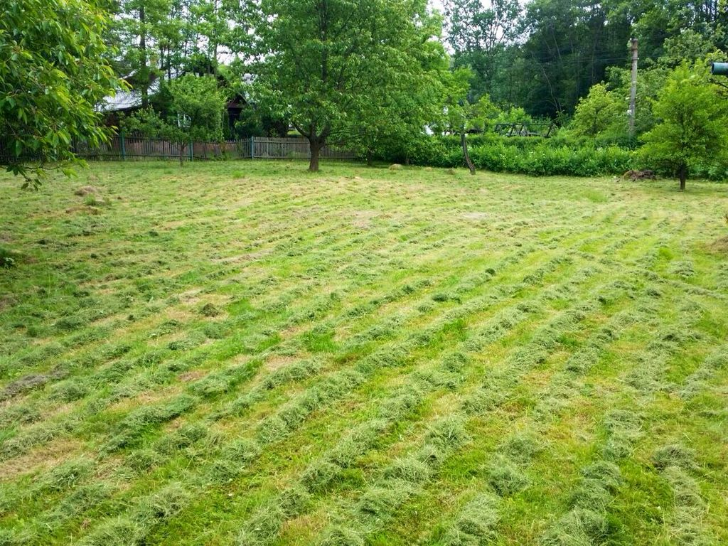 Údržba zeleně vLiberci, údržba trávníků na veřejných prostorech