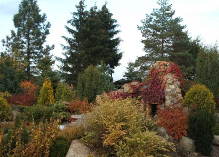 Sadovnická činnost pro krásnou zahradu