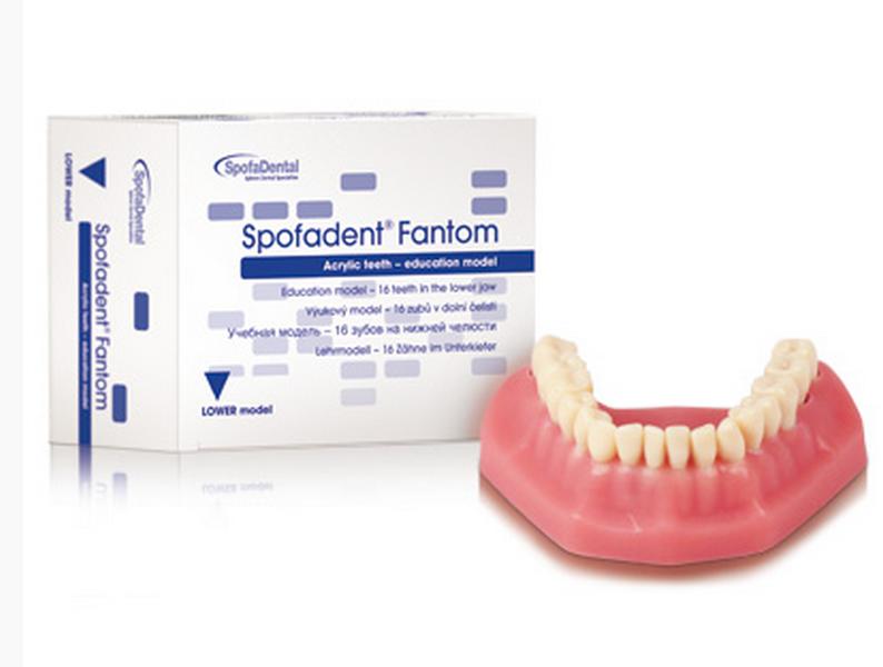 Stomatologické nekovové dentální materiály vysoké kvality pro zubní lékaře i laboratoře
