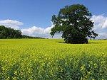 Průmyslová hnojiva, míchání, prodej, dovoz kapalného dusíkatého hnojiva