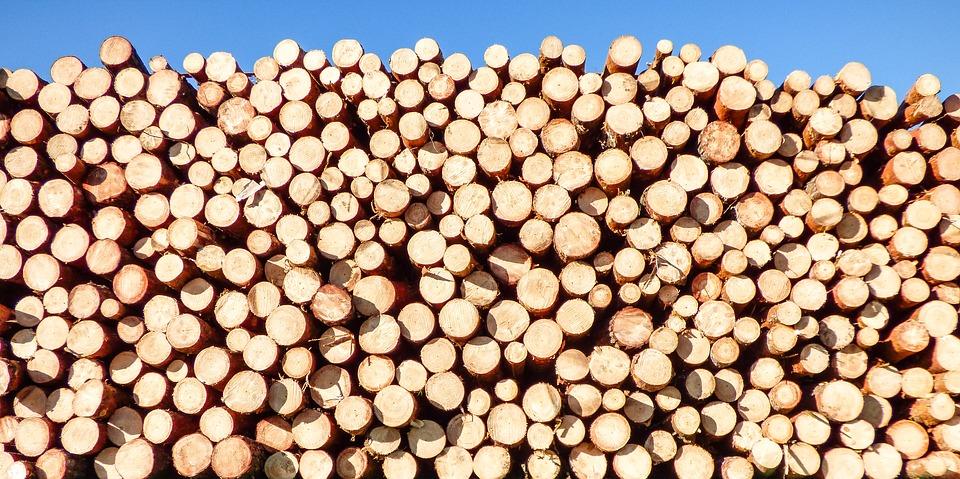 Prodej stavební řezivo pro kutily i stavaře,Vysočina