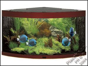 Plaček s.r.o. akvarijní potřeby velkoobchod, akvária