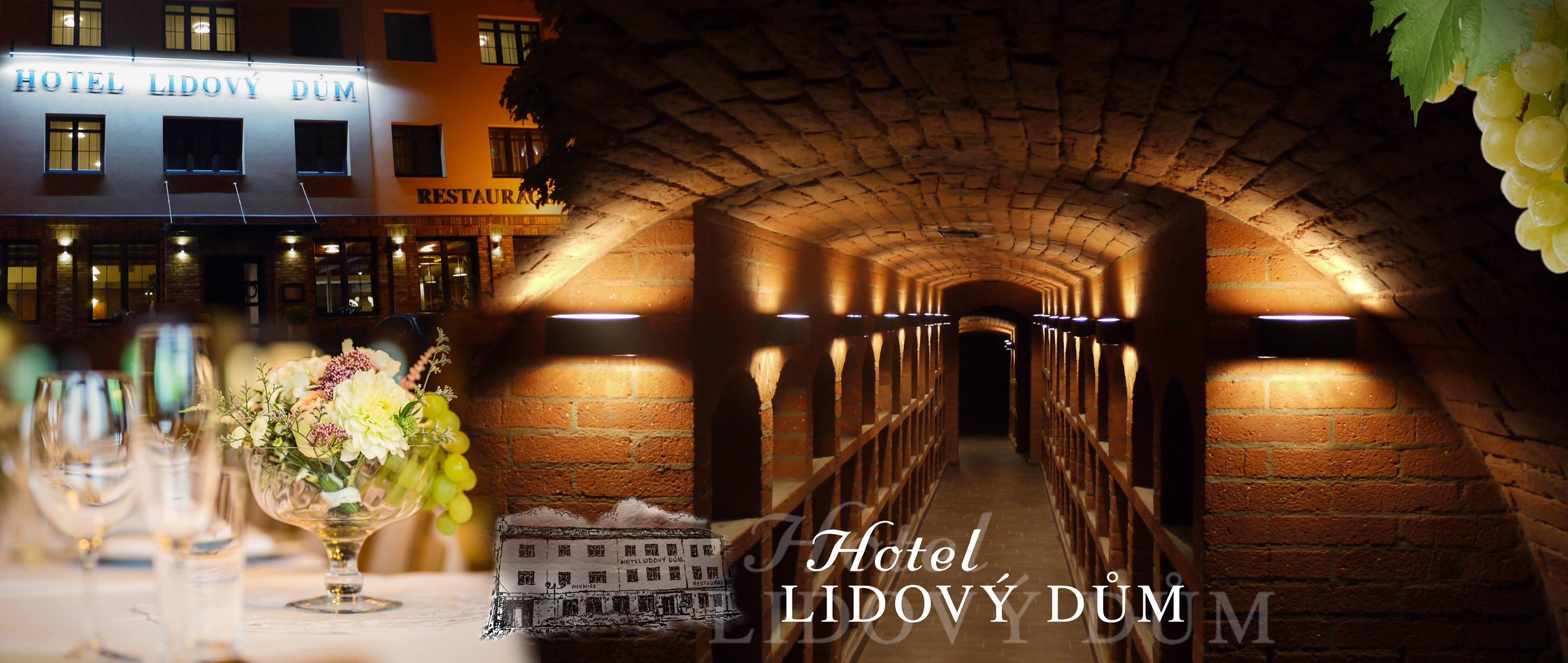 Hotel, příjemné ubytování ve vinařské oblasti Bzenec, školicí místnost pro firemní akce