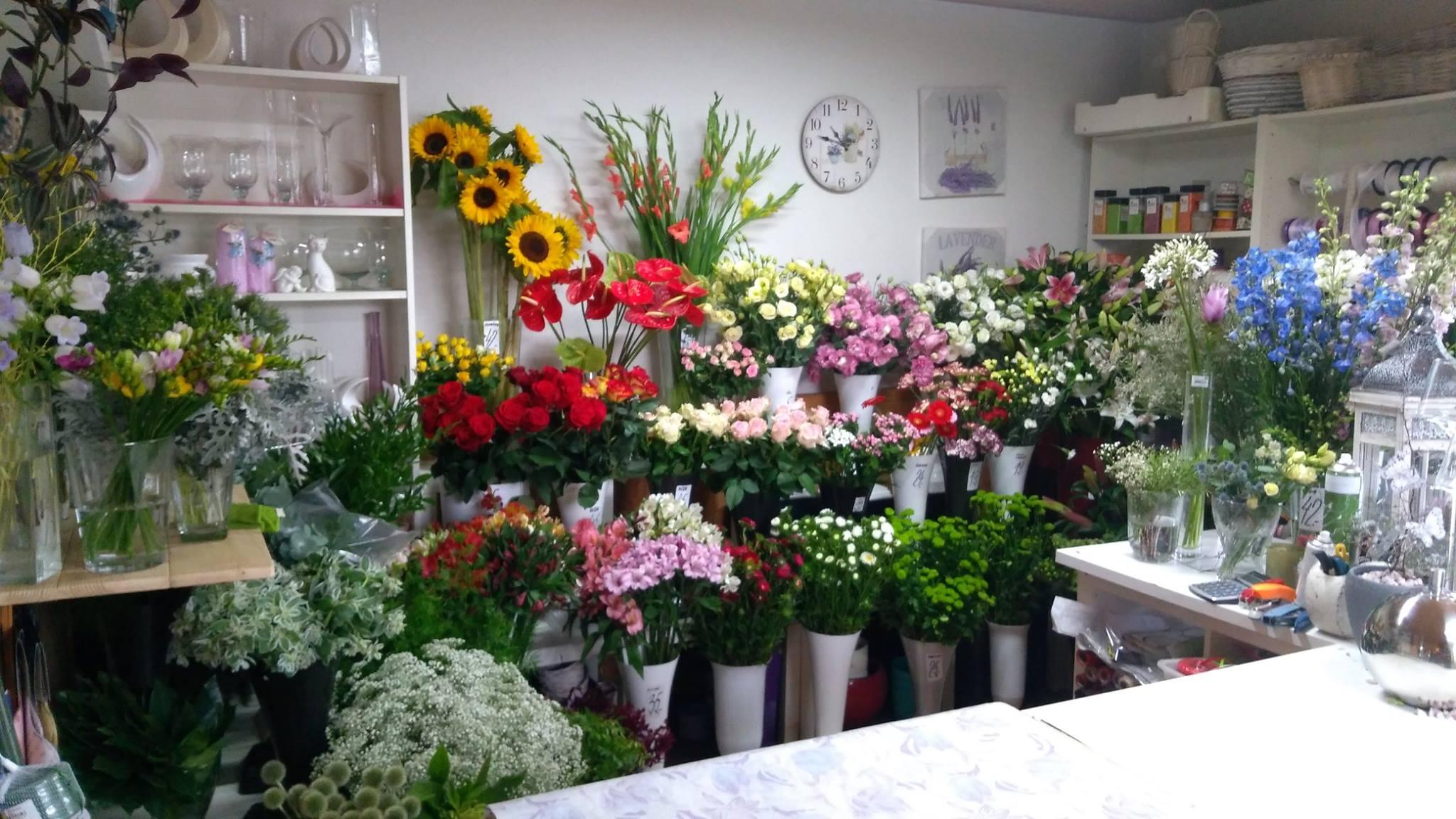 Květinářství, zahradnictví Želechovice - velký výběr semen, balkonových, řezaných květin