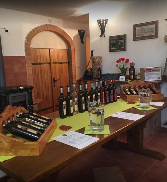 Vinařství na Čejči, degustace, Otvírání sklepů na Moravě