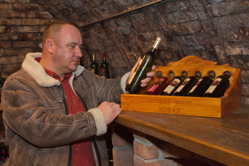 Ochutnávka vína ve sklepě v Čejči. Přijďte na pohárek vína.