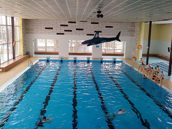Krytý plavecký bazén, plavání Mohelnice