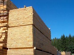 Prodej certifikované stavební řezivo v atypických rozměrech Vysočina