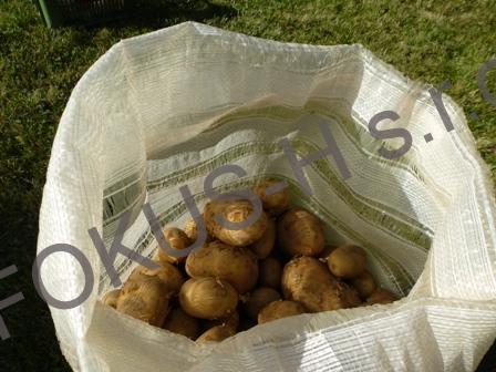 Průduchový pytel na brambory
