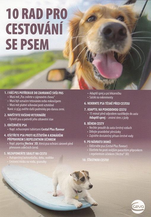 10 rad při cestování se psem