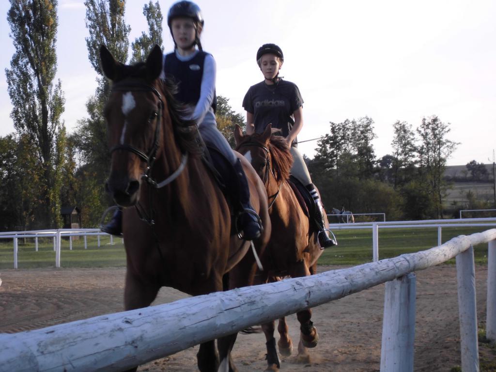 Firemní akce spojené s jízdou na koni Nebanice