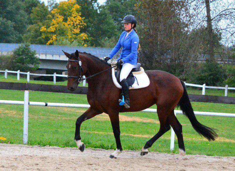 Výcvik jízdy na koni Nebanice