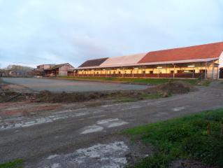 AGRO PODLESÍ, a.s., prodej mléka a mladých býčků