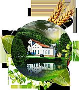 Pivovar, výroba piva HOLBA PREMIUM, ŠERÁK, světové ocenění