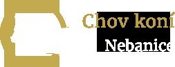 Nebanice u Chebu - ustájení hříbat