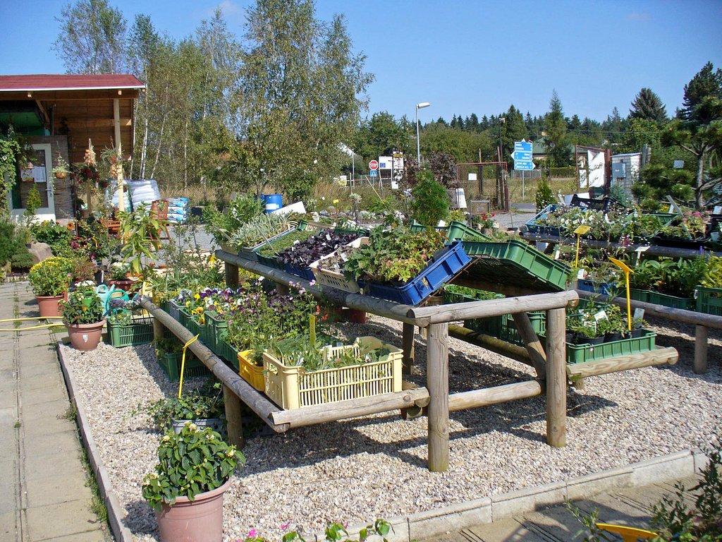 Prodej jehličnanů, ovocných stromů, okrasných rostlin a ryb.