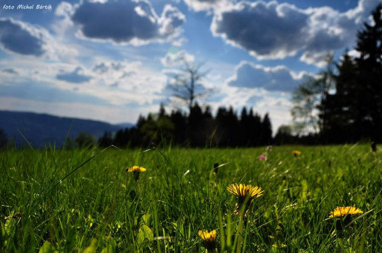 Obec Srní, horské středisko v centru Národního parku Šumava, proslavené romány Karla Klostermanna