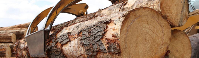Pilařská výroba, pořez kulatiny – řezivo pro truhlářskou a stavební činnost