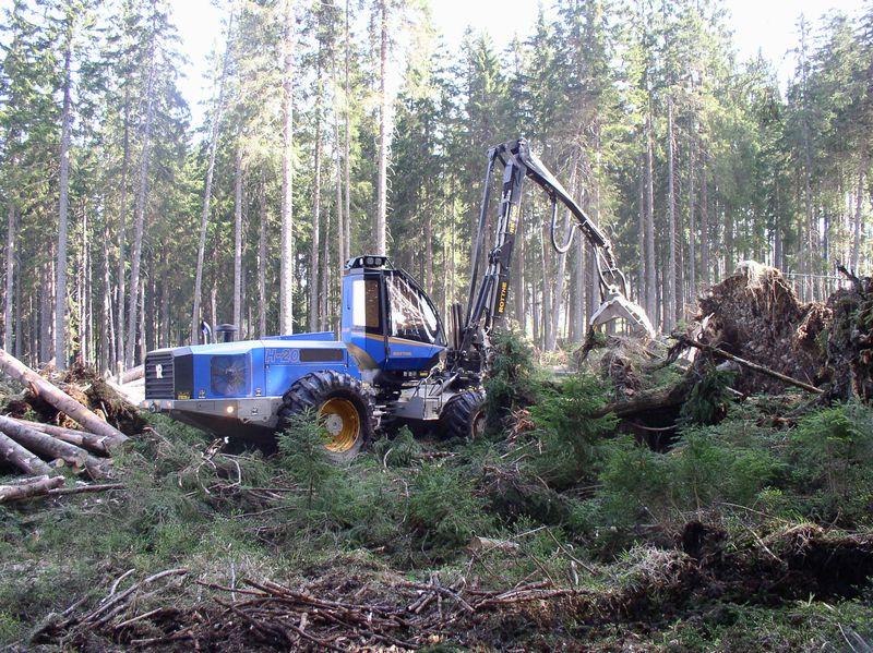 Moderní vybavení pro šetrnou těžbu dřeva