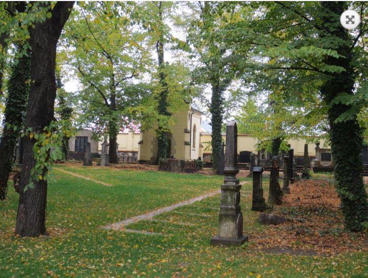 Nově otevřený hřbitov ve Strašnicích v Praze – nyní jako urnový háj a loučka vsypu