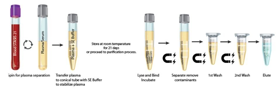Tekutá biopsie - laboratorní vybavená